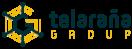 Telaraña Group